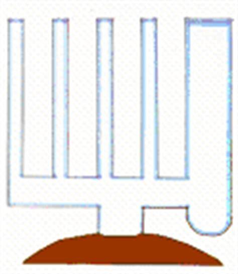 vasi comunicanti capillari i vasi comunicanti capillari