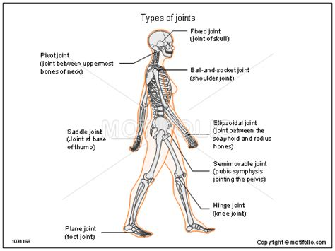 types of joints ppt powerpoint drawing diagrams templates