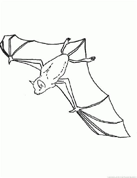 bumblebee bat coloring page bat coloring pages