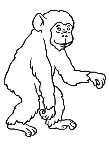chimp coloring page supercoloring com