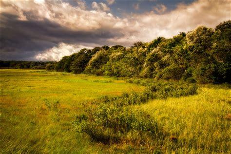 Landscape Photography Websites Photography Websites Botanical Photography Websites