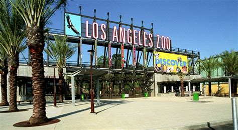 los angeles zoo los angeles county zoo and botanical garden image gallery los angeles zoo