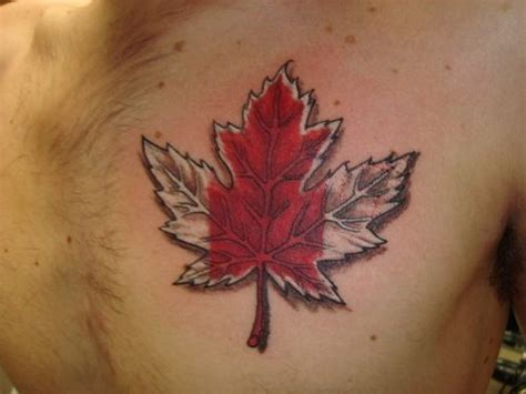 canadian tattoos 17 best ideas about canadian on canada