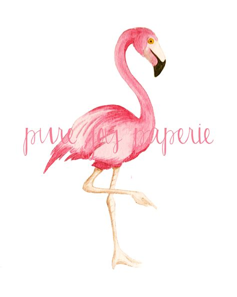 Bathroom Shower Tile Design by Shorely Chic Flamingo Friday
