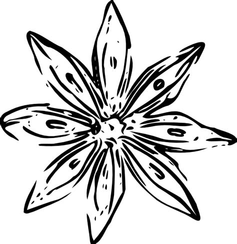 Flower Outline Black And White by Clipart Flower Outline