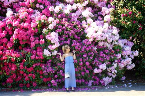 Emtalks A Sunny Weekend Flower Gardens And Blue Skies How To Create A Flower Garden