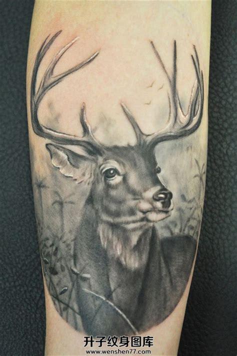 黑灰色写实鹿头纹身欧美 升子纹身520