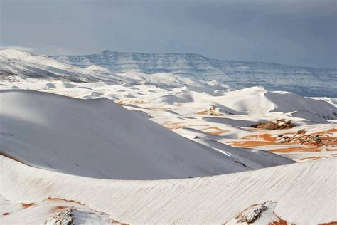 snow in sahara rare snow covers the sahara desert in algeria second