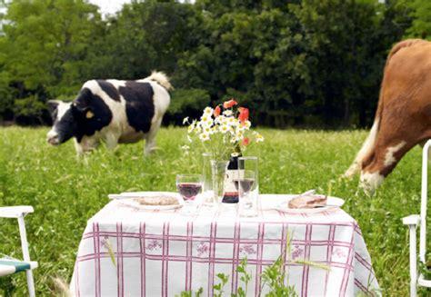 versi di animali da cortile ristorante tipico agriturismo nel salento