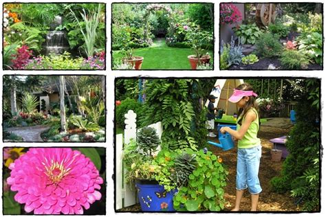 home gardening  successful home gardening helps