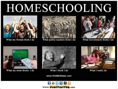 Home School Meme - looking out the window by outback girl what are those