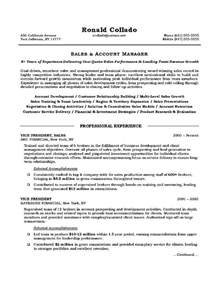 Sles Of Objective In Resume sales executive resume objective free sles exles