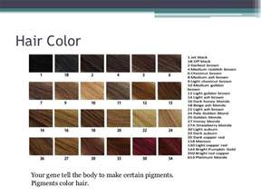 hair color genetics traits