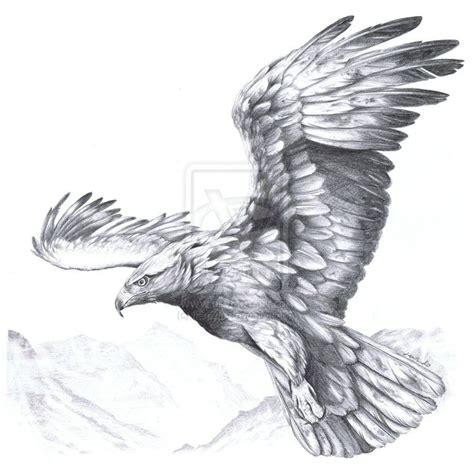 tattoo eagle sketch 25 best adler tattoo ideas on pinterest adler zeichnung