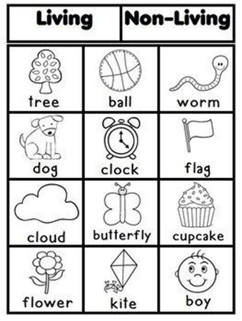 Living And Nonliving Things Worksheets Pdf by 25 Best Ideas About Living And Nonliving On