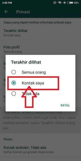 whatsapp tidak terlihat   works