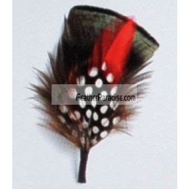 1000 images about feather hat pin on