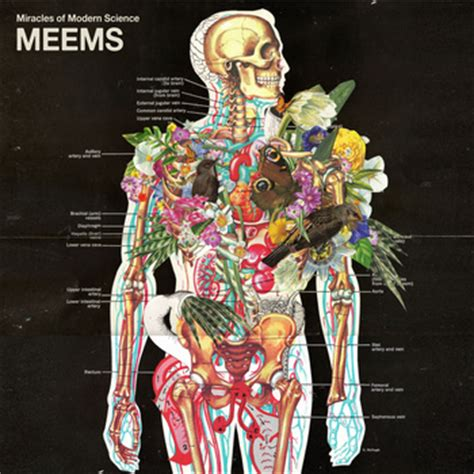 Meems Images - album meems and track the singularity by acoustic rock