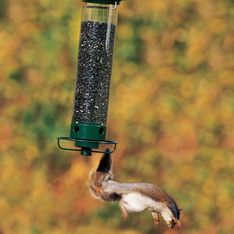 squirrel proof bird feeder spinner