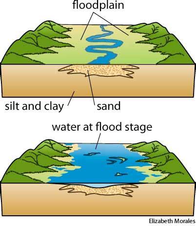 What Are Floodplans Floodplain Dictionary Definition Floodplain Defined