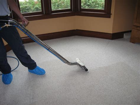 kc carpet and upholstery cleaners the importance of hiring professional carpet cleaning
