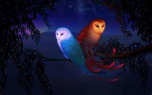 Call Of The Barn Owl Working With Totem Animals Old Barn Owl