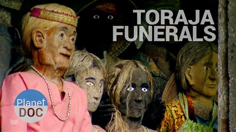 Toraja Maxy toraja funerals culture planet doc documentaries