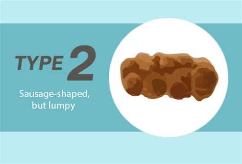 Stool Smells Different by Slideshow What Its Shape Size And Smell Say About