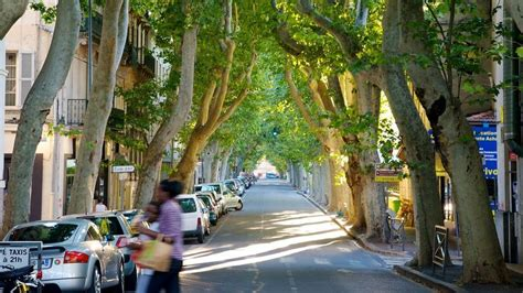 avignon vacations  vacation packages deals