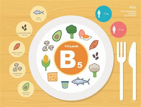 acido pantotenico alimenti vitamina b5 a cosa serve propriet 224 controindicazioni e