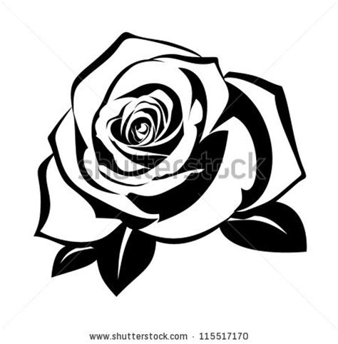 Rosebud Putih roses 140 vectors free vector graphics 123freevectors