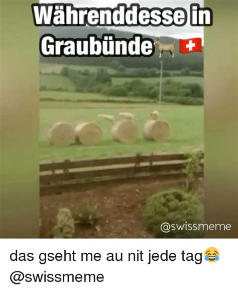 Harga Jam Tangan Montblanc Barrels 25 best swiss memes toh memes irie memes validation memes