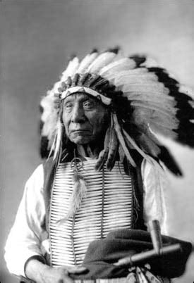 famous native american warriors top 15 most famous native americans listverse