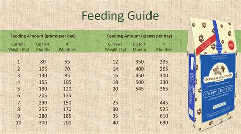 puppy feeding guide puppy chicken food