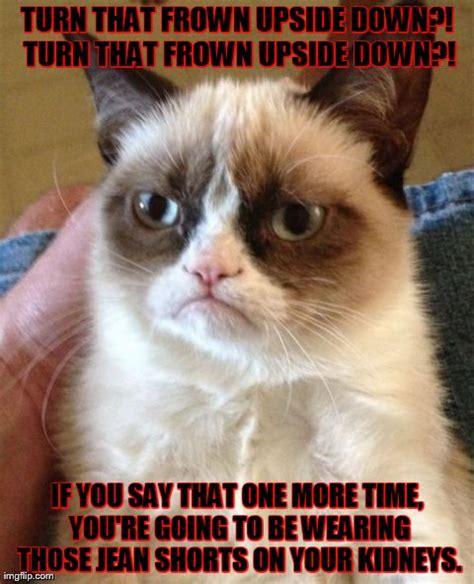 Frown Cat Meme - grumpy cat meme imgflip