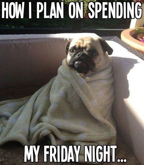 Friday Night Meme - how i plan on spending my friday night picture quotes