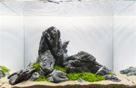 ada aquascape aquascape no 4 ada 45p the planted tank forum