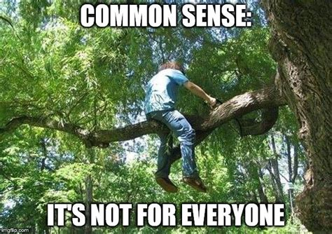 Tree Meme - needing an ambulance in 3 2 imgflip