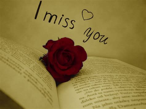almost missed you a novel books 23 miss you