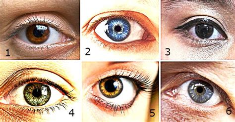 eye color and personality scientists discover connection between eye color and