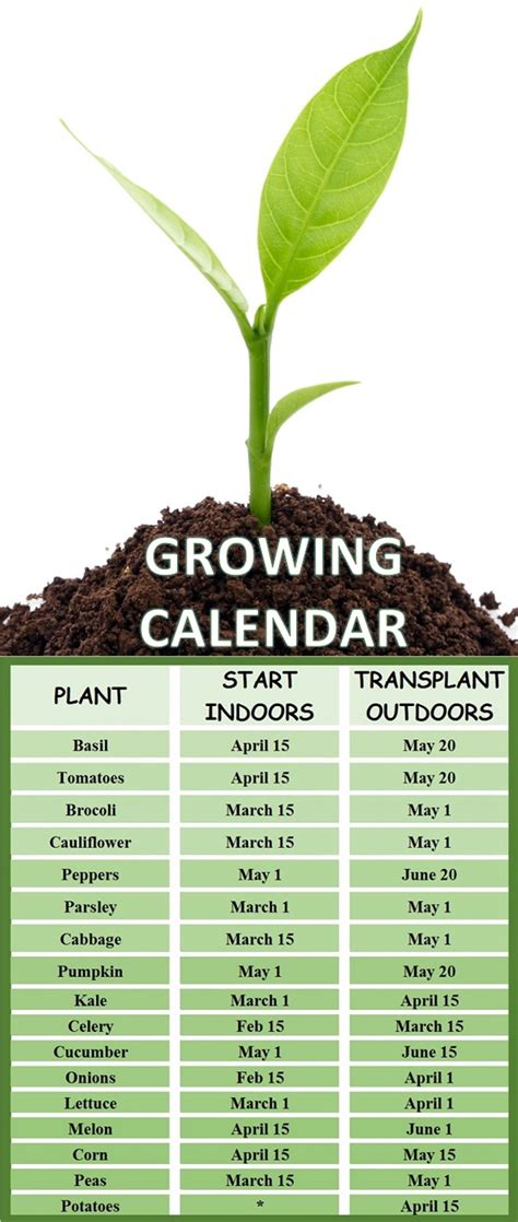 growing calendar   plant  vegetable garden