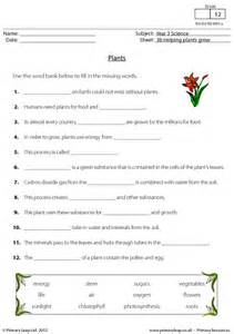 How Does Answer Garden Work Primaryleap Co Uk Plants Worksheet