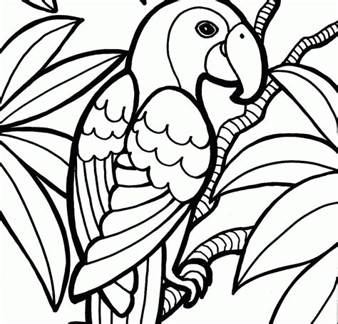 Printable Bird Coloring Page Parrot Animal Pages Free Parrots Animals Pictures Sheets Stock Printable Coloring Books For
