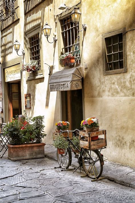 best trattoria in florence 25 best ideas about viajes on lugares