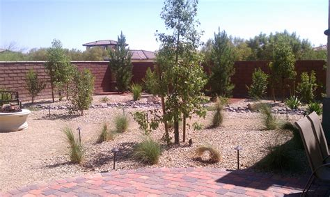 Special Desert Landscaping Ideas At Home Bistrodre Porch Desert Landscape Ideas For Backyards