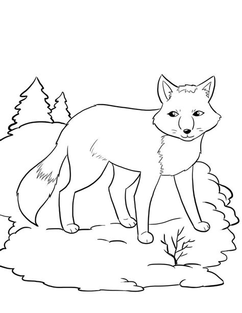 coloring pages animals hibernating free artic fox coloring page for kids winter coloring