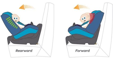 what is the for rear facing car seats car seat safety rear facing vs forward facing www