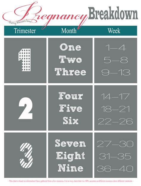 pregnancy week month trimester chart maternity