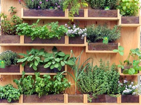 orto in terrazza come fare costruire un orto da terrazzo foto design mag