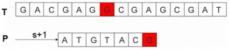 ng pattern password match problema del pattern matching approssimato